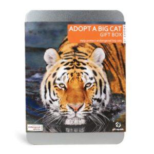 Adoptuj kočkovitou šelmu