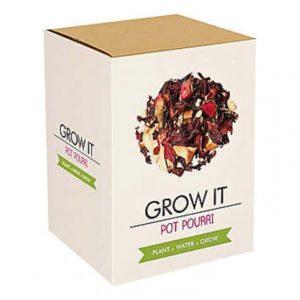Grow it - Vánoční punč