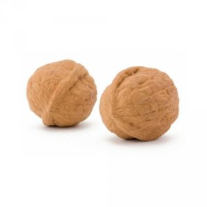 Guma vlašský ořech