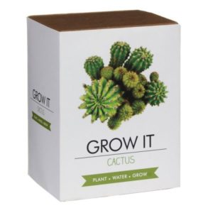 Grow it - Kaktus