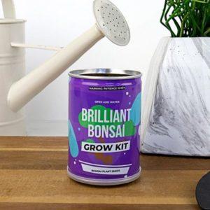 Grow Tin - plechovka bonsai