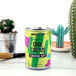 Grow Tin - plechovka kaktusu