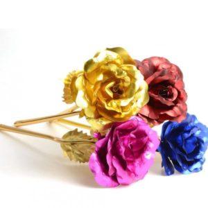 Barevné dekorativní růže